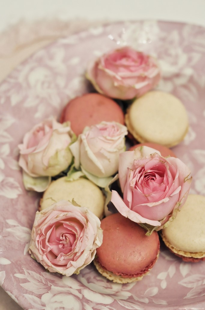 Macarons framboise vanille rose Picard surgeles