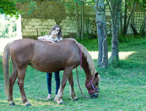 Lifestyle poney cheval nature bebe blog Alexiane