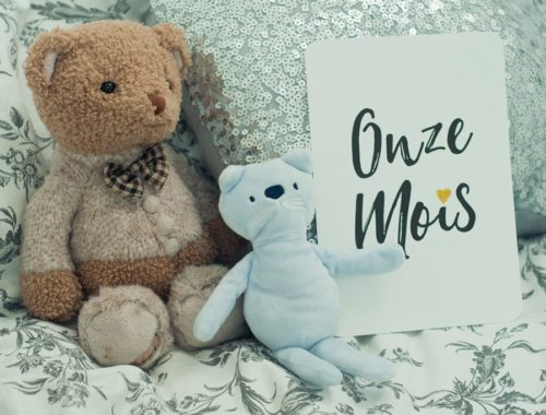 11 mois carte etape June and Jane bebe enfant doudou ours Bukowski